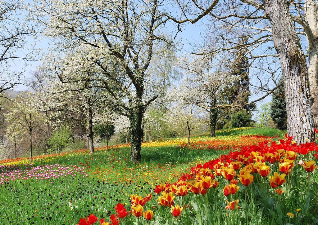 Романтичная весна