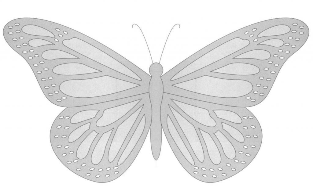 как вырезать бабочку пошагово