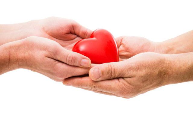 как оплачиваются донорские дни