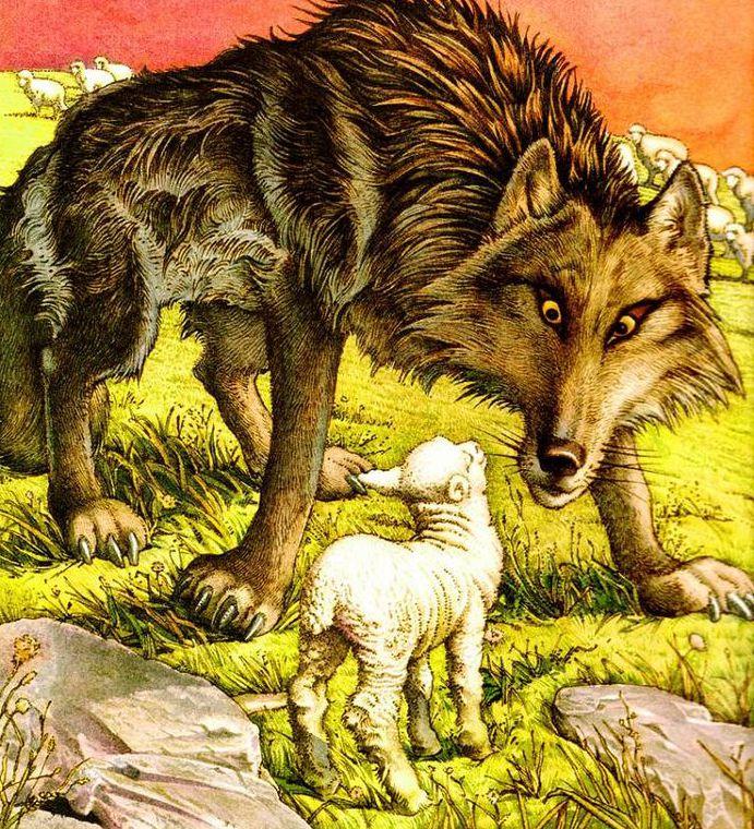 "Басня ""Волк и Ягненок"""