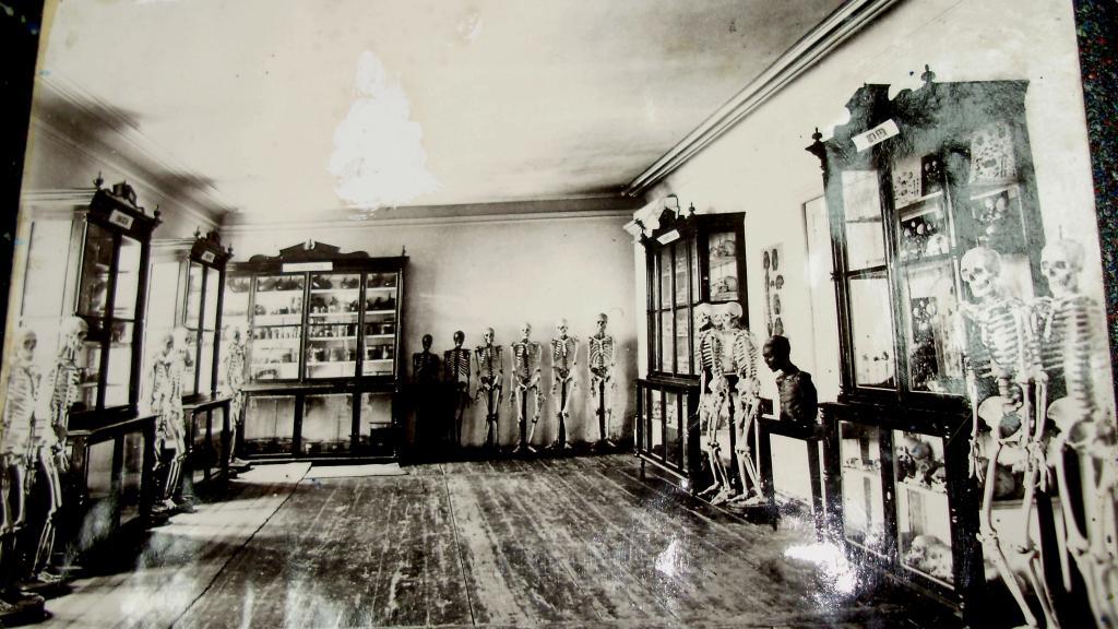 Анатомическая школа Загорского