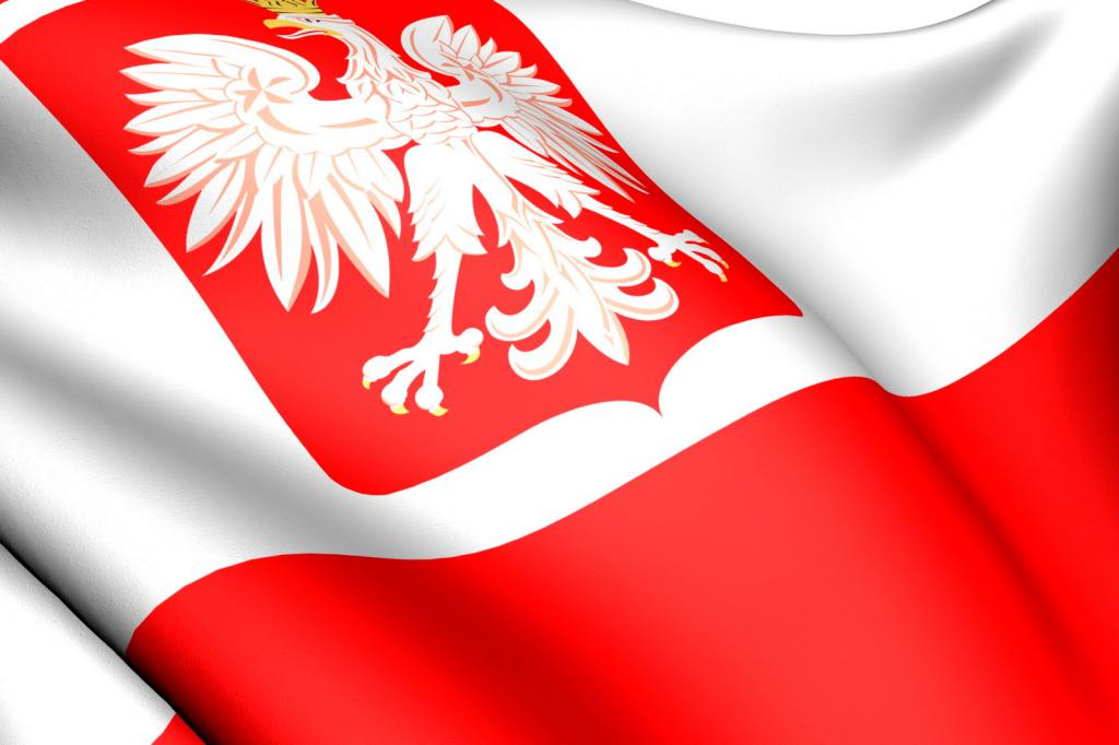 Какая виза в Польшу