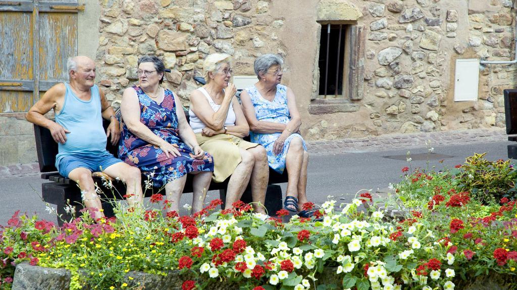 Что подарить пожилому человеку - садоводу