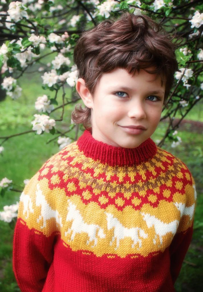 свитера лопапейса схемы вязания