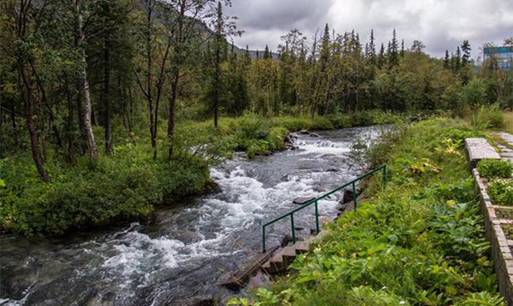 Горная река на территории ботанического сада