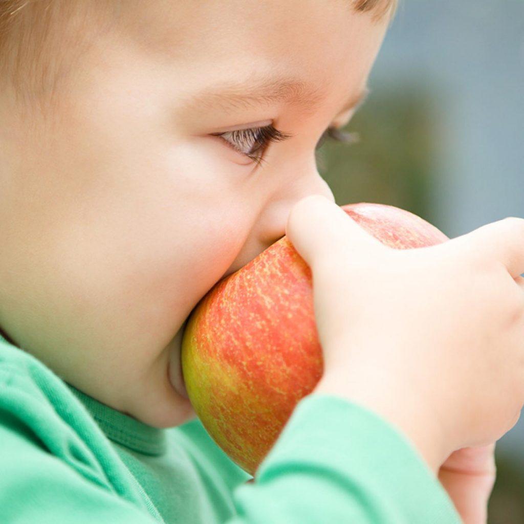 Как научить ребенка глотать твердую пищу