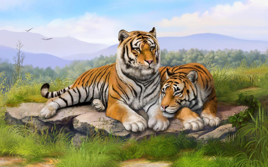 Совместимость Тигров в любви