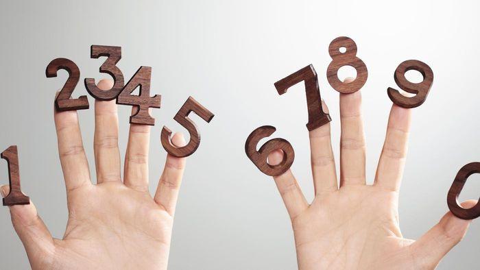 Цифры являются знаками