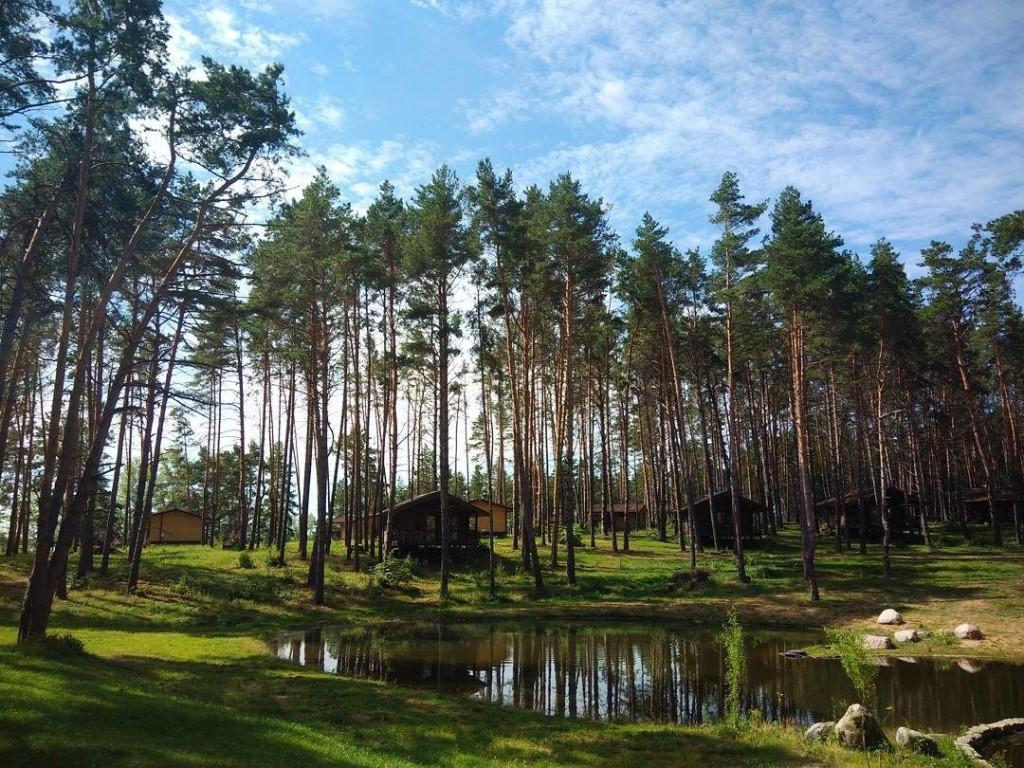 погода в ульяновской области