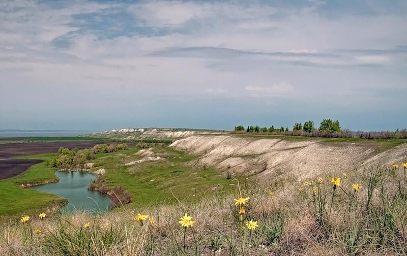 природная зона ульяновской области