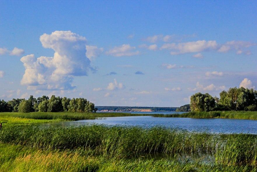 какая погода в ульяновской области