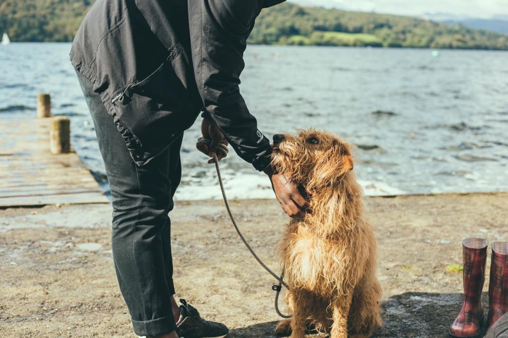 Человек и пес у озера