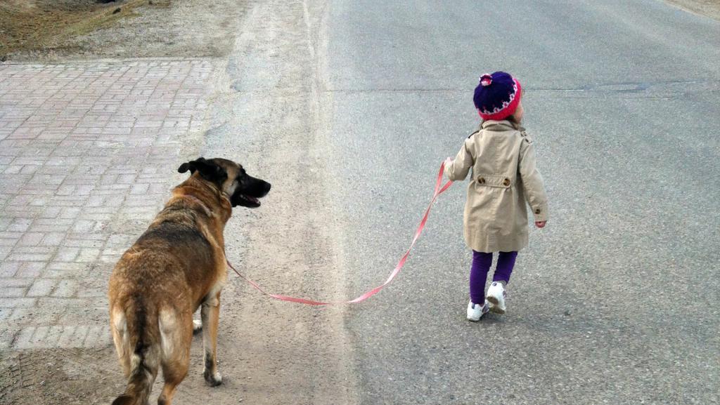 Девочка выгуливает собаку