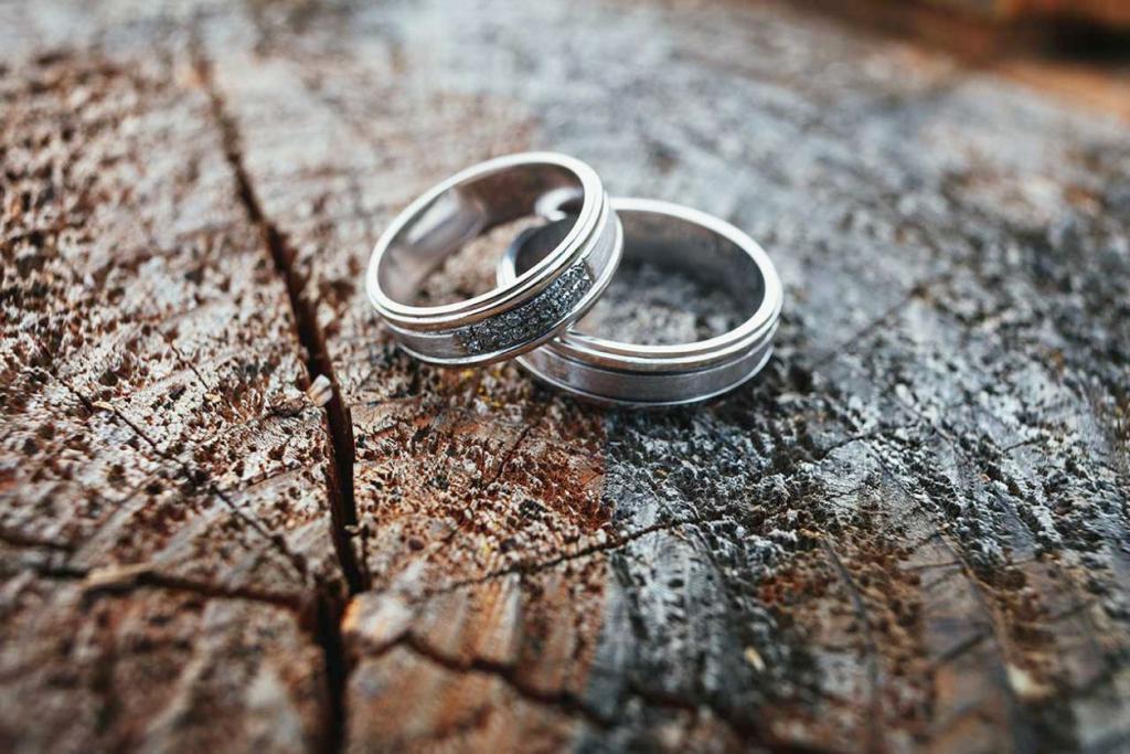 два кольца на дереве