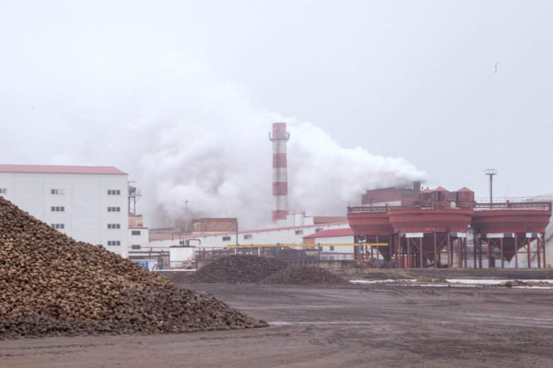 Крупнейшие сахарные заводы России