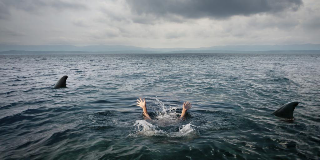 спасение от акулы