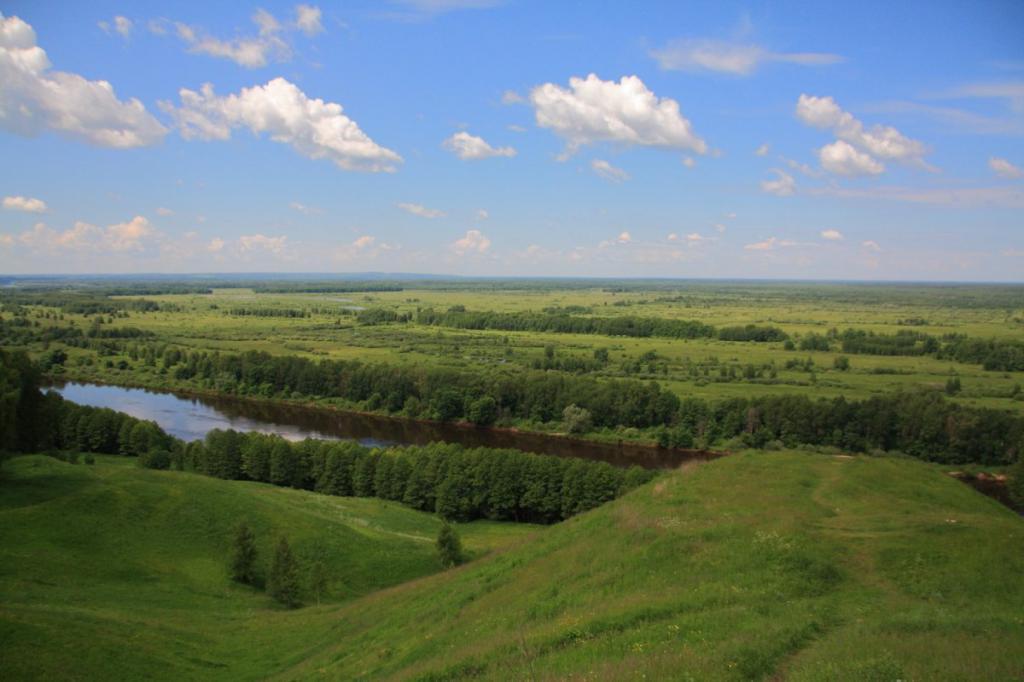 владимирская область площадь территории