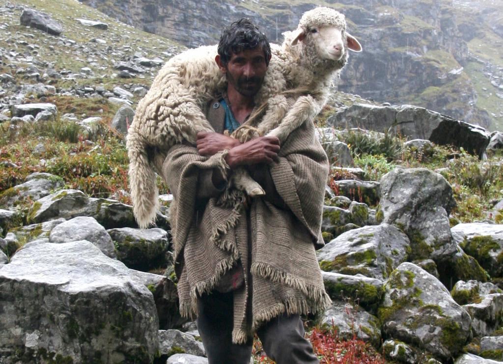 пастырь фото
