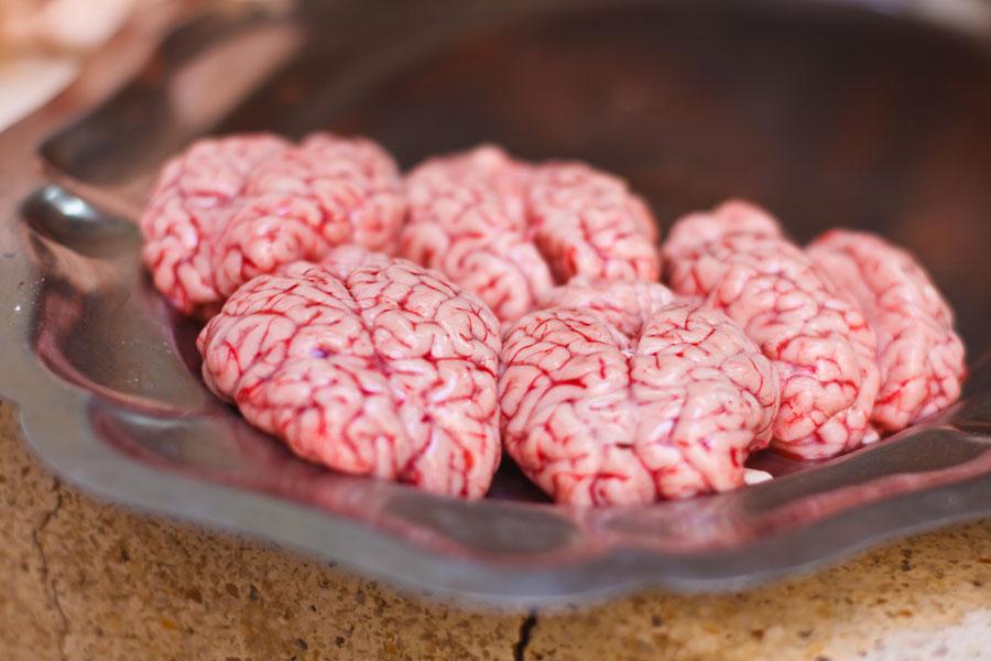Вред от говяжьих мозгов