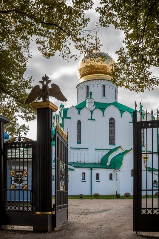 Ворота Феодоровского собора