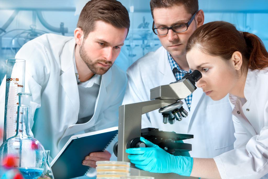 Понятийное мышление в научной сфере