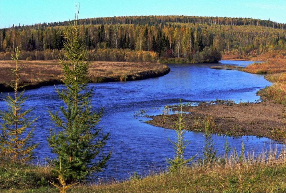 фото реки Лозьва