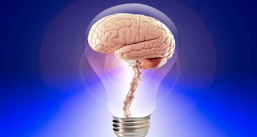 физика и мозговая деятельность