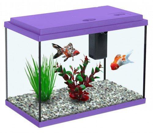 комнатный аквариум