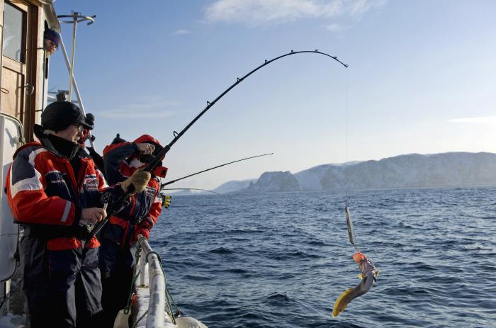 рыбалка во фьордах