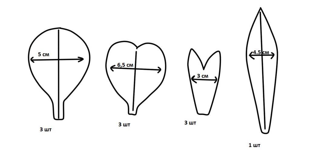 Шаблоны лепестков для ириса