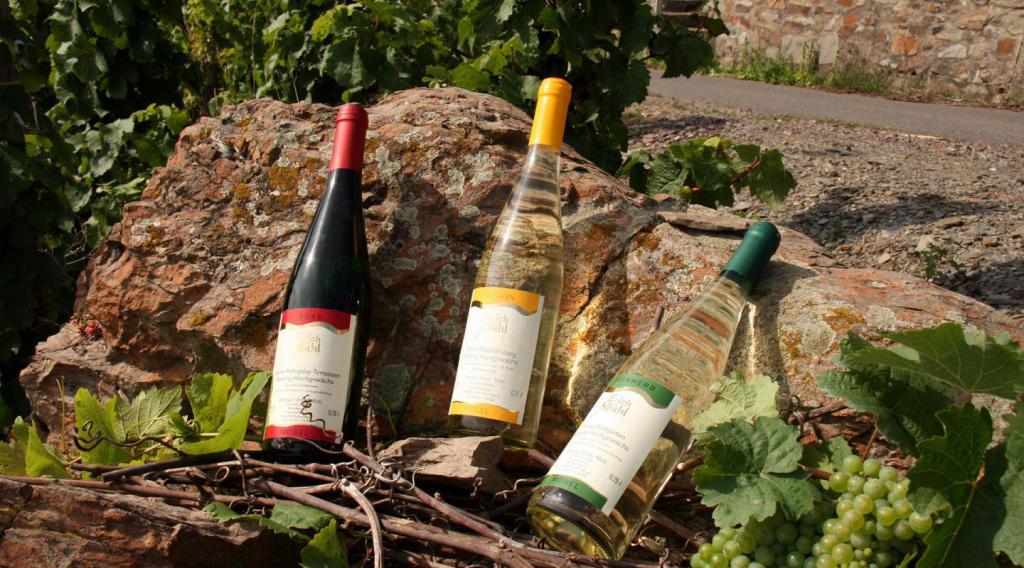 Мозельское вино в бутылках