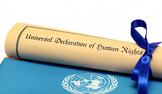 декларация бумага