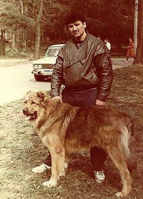 Яков на прогулке с собакой
