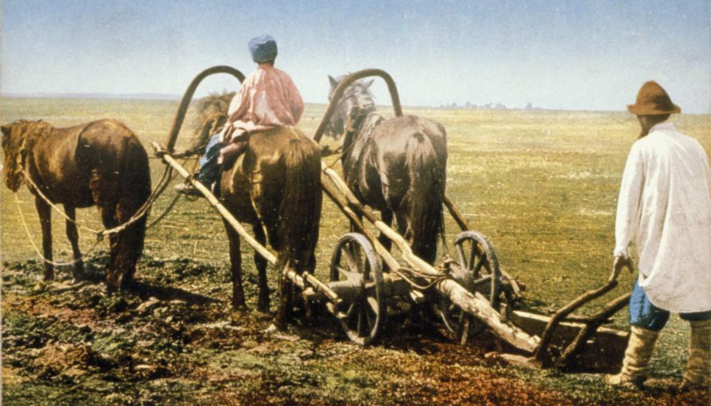 Калашниковы крестьянская фамилия