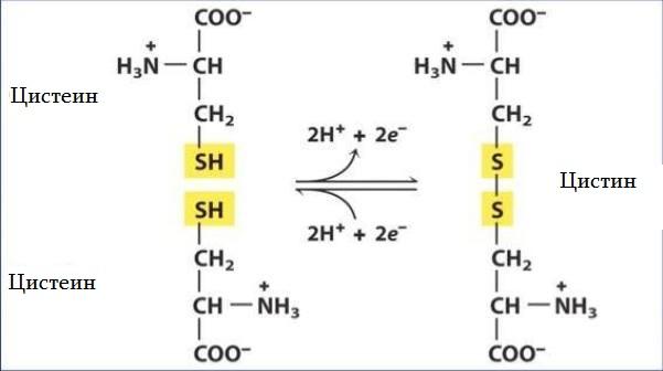 Синтез вещества