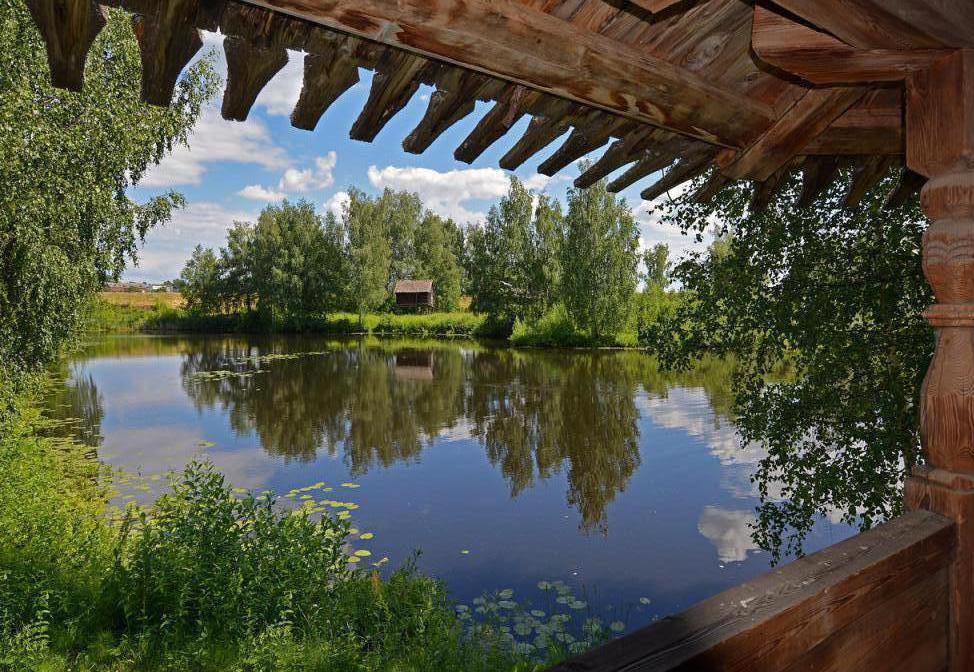 Природа Костромы