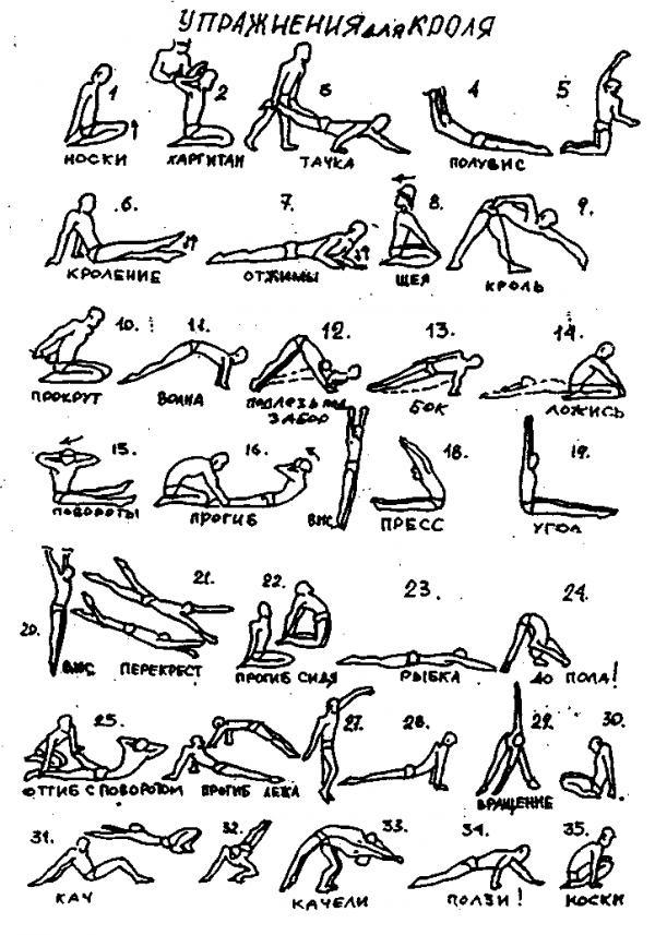 Упражнения для кроля