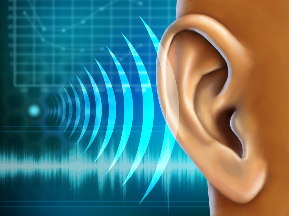 Что слышит ухо