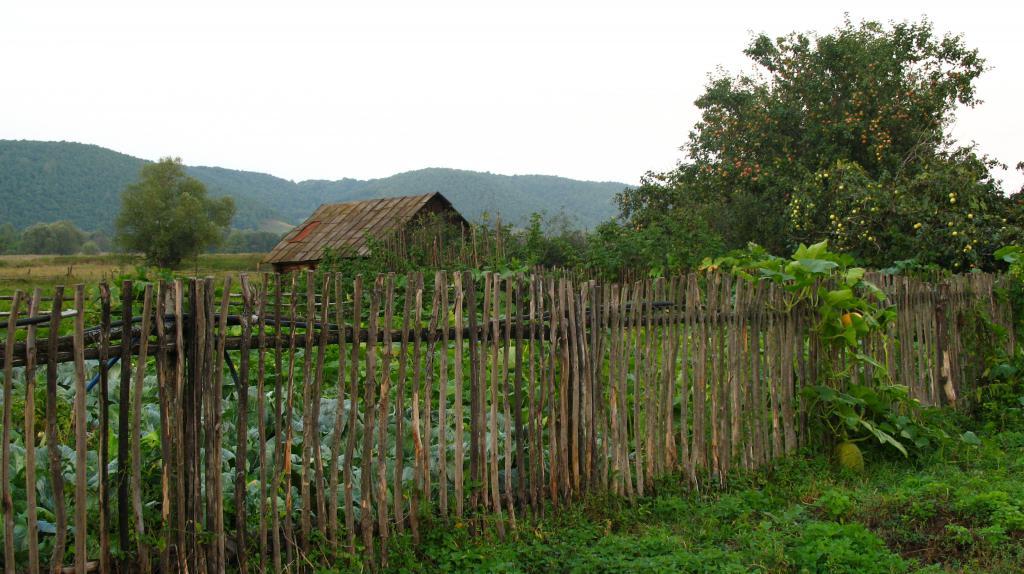 Село Красный Бор