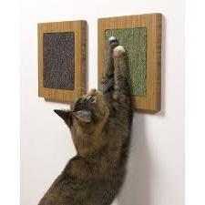 какая когтеточка для кошек лучше
