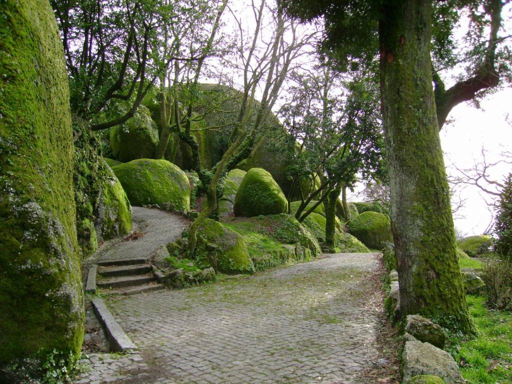 Парк на холме Пенья