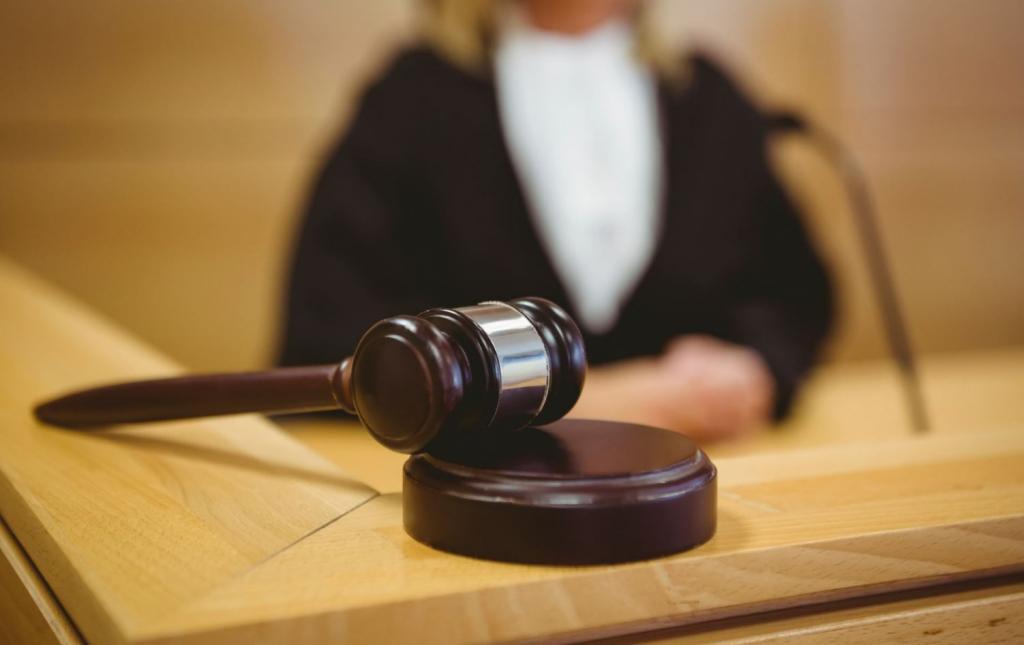 Наследство разделит суд