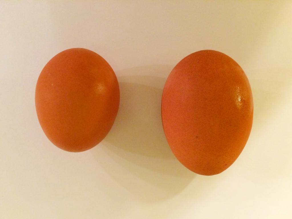 двухжелтковые куриные яйца
