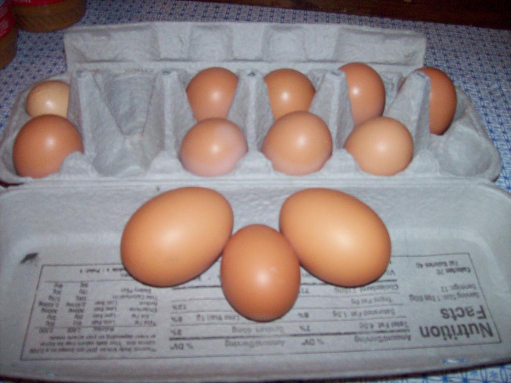 Производство двухжелтковых яиц