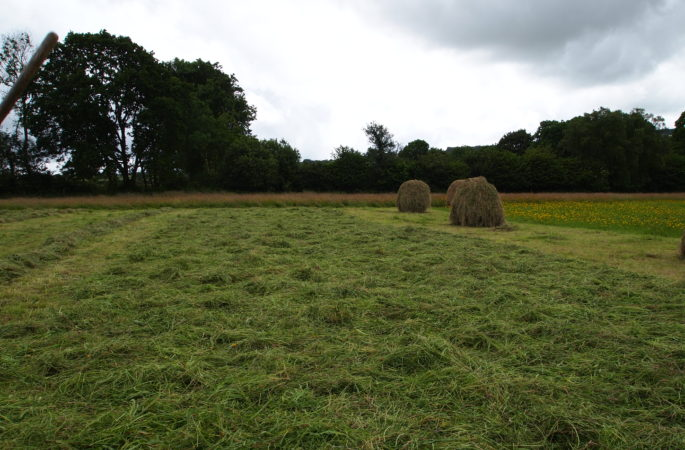 Сушка сена на поле