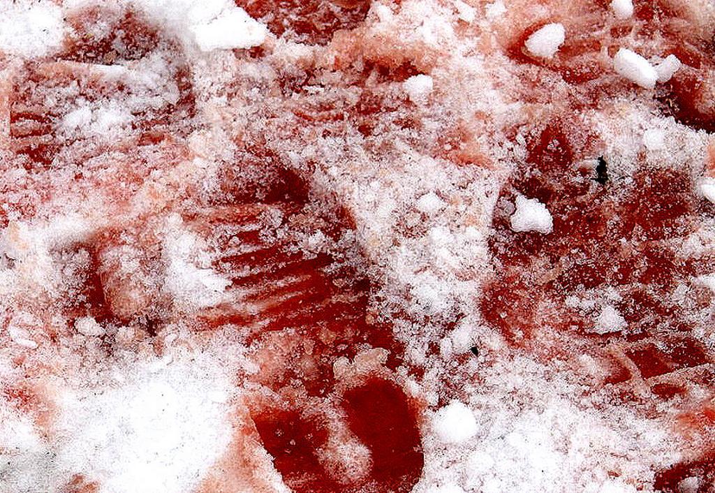 Следы крови