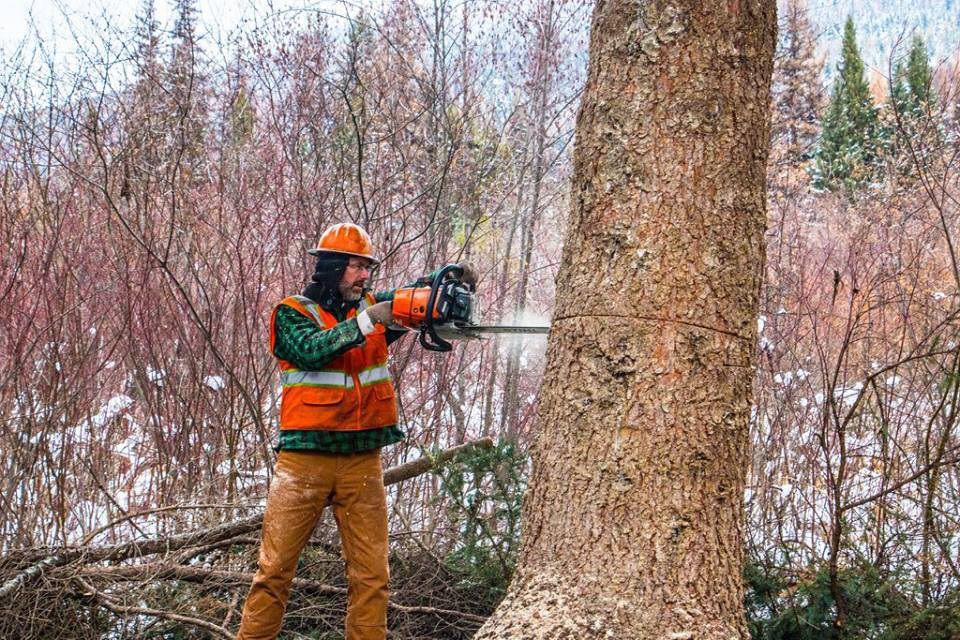 Ручная лесозаготовка