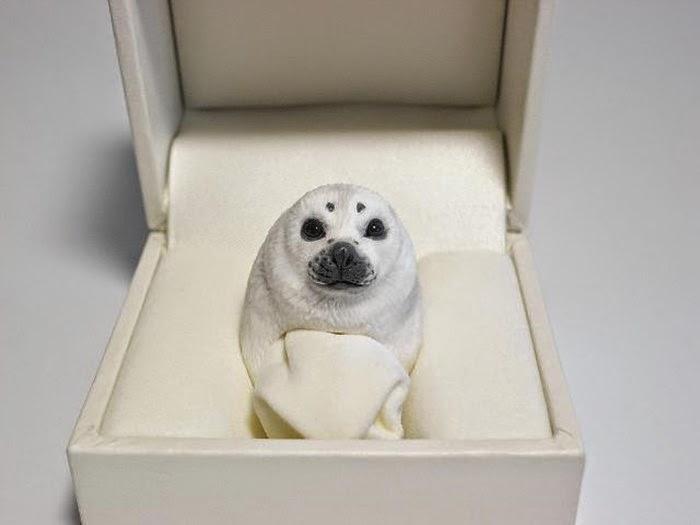 Кольцо тюлень