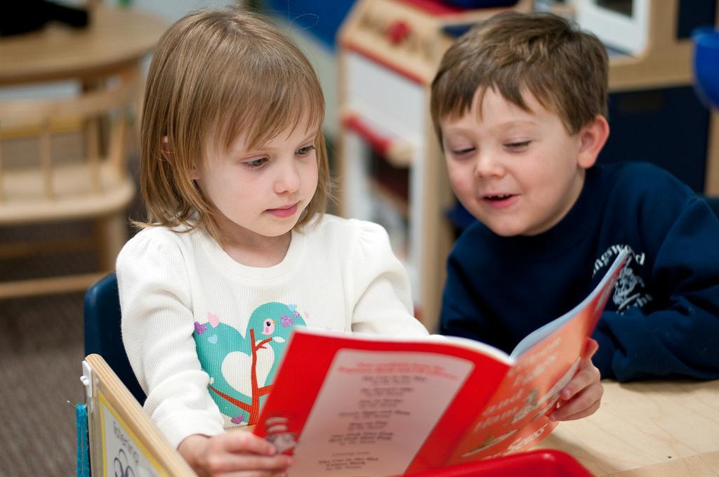 принципы стандарта дошкольного образования