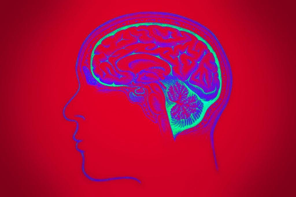 мозг на красном фоне